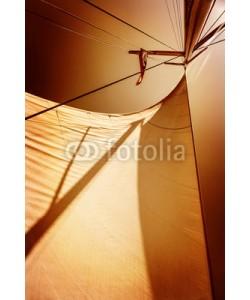Anna Omelchenko, Sails in sunset light