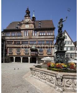 Blickfang, Tübingen Neptunbrunnen vor dem Rathaus
