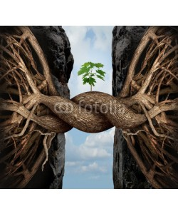 freshidea, Unity Growth Concept