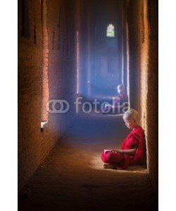 anekoho, Young Buddhist monk reading and study