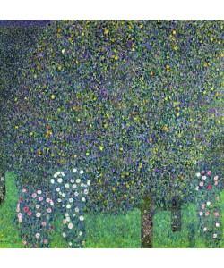 Gustav Klimt, Roses under the Trees, c.1905 (oil on canvas)