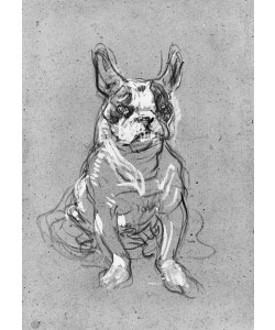 Henri de Toulouse-Lautrec, 'Bouboule', the bulldog of Madame Palmyre at La Souris, 1897 (oil on cardboard) (b/w photo)