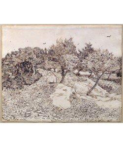 Vincent van Gogh, The Olive Trees (pen & ink on paper)