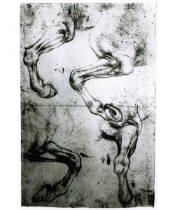 Leonardo da Vinci, Studies of Horses legs (pen and ink on paper)