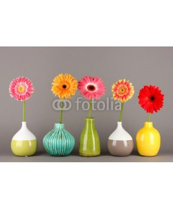 Africa Studio, Beautiful Gerber flowers on grey background
