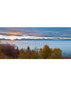 akulamatiau, Swiss Forest Autumn  View