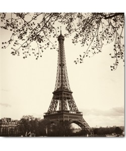 Alan Blaustein, Tour Eiffel