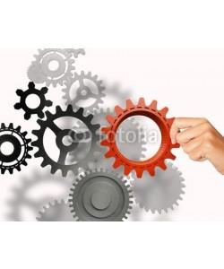 alphaspirit, Build a business system