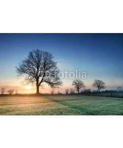 AlexanderLrs, Sonnenaufgang