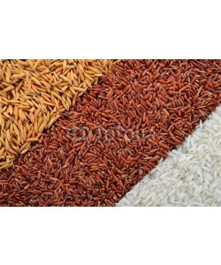 amenic181, rice in each milling step ( three kinds of rice)