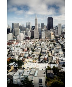 Andrew Bayda, View of San Francisco, USA