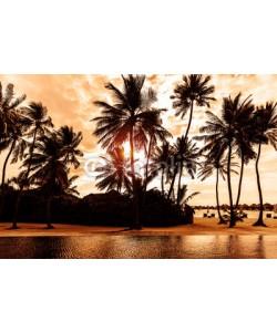 Anna Omelchenko, Tropical beach on sunset