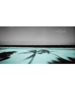 Anne Valverde, Palm & Sands