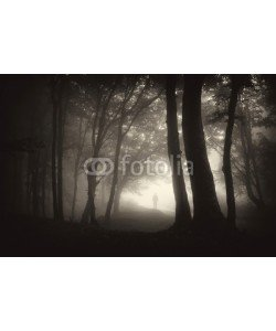 andreiuc88, strange figure of a man person walking in a dark forest with fog