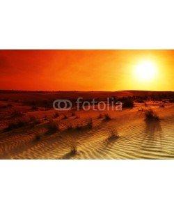 Anna Omelchenko, Extreme desert