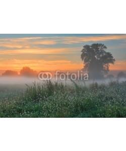 Anton Petrus, Misty dawn autumn morning