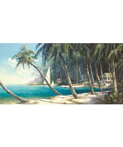 Art Fronckowiak, Bali Cove