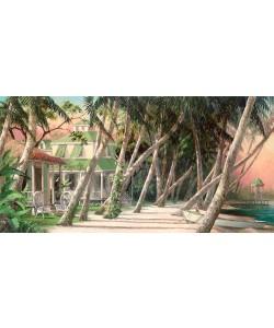 Art Fronckowiak, Island House