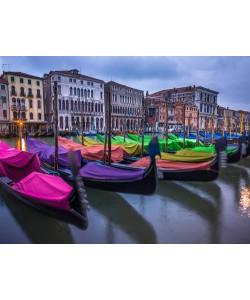 Frank Assaf, Venice III