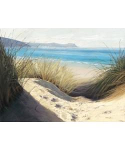 Caroline Atkinson, Dune Shadows