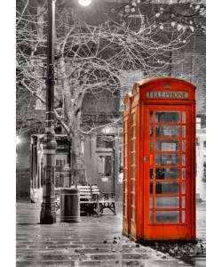 Aurélien Terrible, London Phone