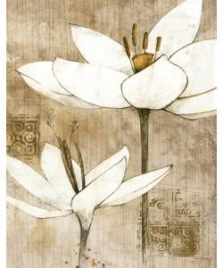 Avery Tillmon, Pencil Floral I