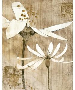 Avery Tillmon, Pencil Floral II