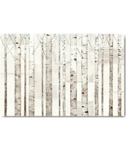 Avery Tillmon, Birch Trees on White