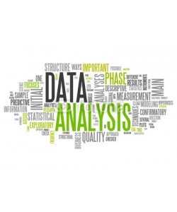 Ben Chams, Word Cloud Data Analysis