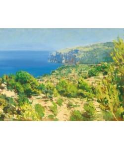 Raphael Bergmann, An der Küste