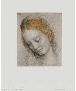 Bernardino Luini, Kopf einer Frau