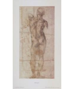 Michelangelo, Männlicher Akt