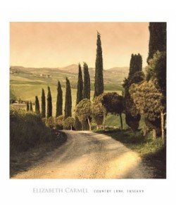 Elisabeth Carmel, Country Lane, Tuscany