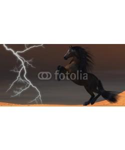 Catmando, Desert Lightning Horse