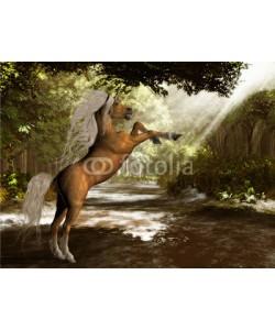 Catmando, Forest Unicorn