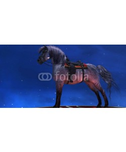 Catmando, Kiger Silver Horse