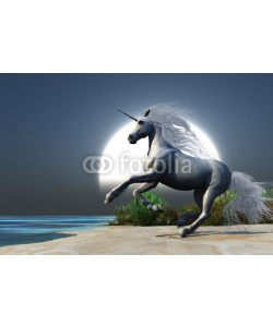 Catmando, Midnight Unicorn