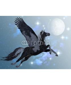Catmando, Pegasus 03