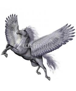 Catmando, Silver Winged Pegasus