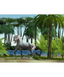 Catmando, Unicorn 01