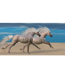 Catmando, Unicorns