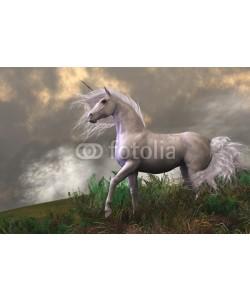 Catmando, White Unicorn Stallion