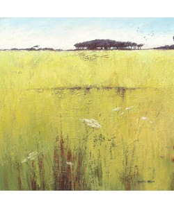 Caroline Atkinson, Fields and Hedgerows