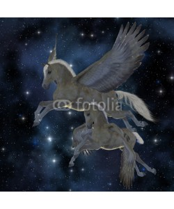 Catmando, Pegasus 04