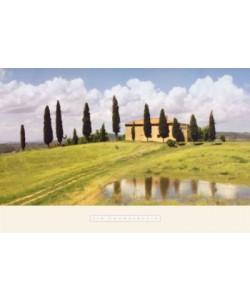 Chamberlain Jim, Tuscan Hillside #5