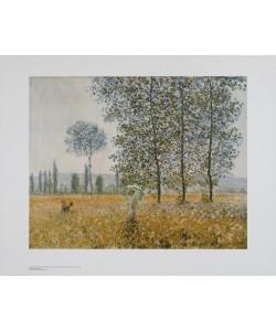 Claude Monet, Felder im Frühling
