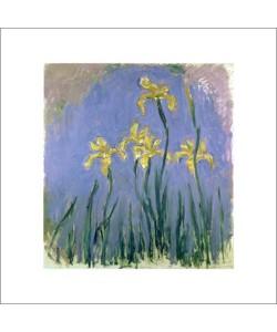 Claude Monet, Les Iris Jaunes