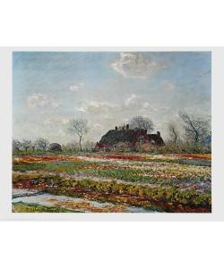 Claude Monet, Tulpen in Sassenheim