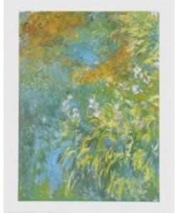 Claude Monet, Yellow Iris