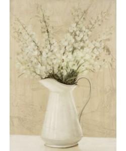 David Col, Jarras flores silvestres 1